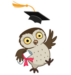 owl graduate vector image