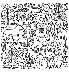 Set with Forest elements vector image vector image