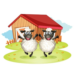 Two black sheeps with a barn at the back vector image
