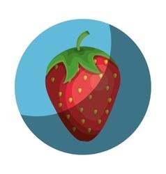 fresh fruit farm product vector image