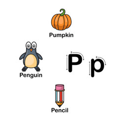 alphabet letter p-pumpkin penguin pencil vector image