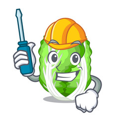 Automotive chinese cabbage vegetable isolated on vector