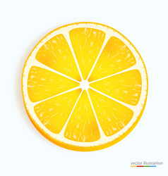 Fresh lemon slice icon on a white vector