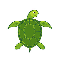 green sea turtle icon vector image