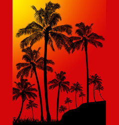 palm trees forest portrait background vector image