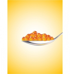 spoon with red caviar vector image