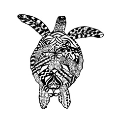 Zentangle stylized turtle Sketch for tattoo or t vector image