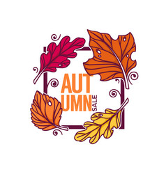 Autumn sale bright fall leaves discount banner vector
