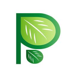 initial letter p leaf logo vector image