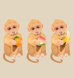 Monkey holding an orange peach and banana vector image