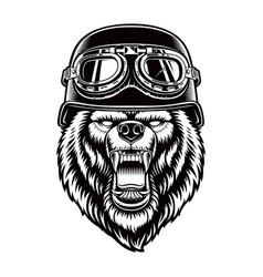 black and white a bear in biker helmet vector image