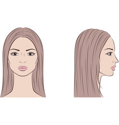Female face with long hair front and side vector