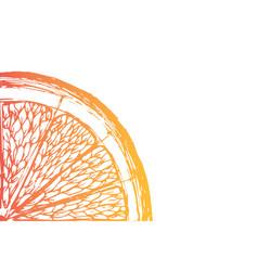 fresh ripe slice of orange on white vector image