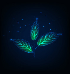 glowing plant with stem and green leaves made of vector image