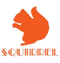 squirrel icon vector image