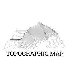 topographical map of the locality vector image
