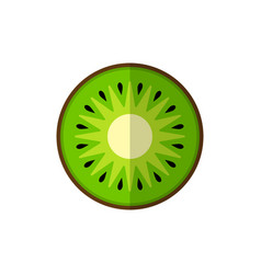 kiwi on white vector image vector image