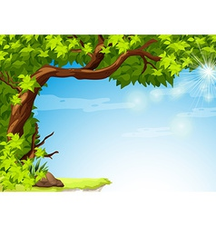 A tree with green leaves and the clear blue sky vector