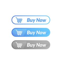 modern design buy now button online shop icon vector image