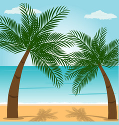 panoramic view beach with palm trees with blue vector image
