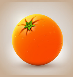 Realistic fresh orange with waterdrops vector