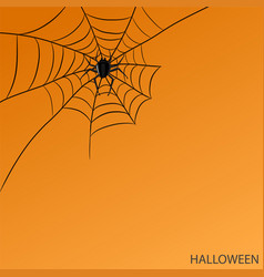 spider on web on halloween orange background for vector image