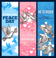 White dove of peace sketch banner with pigeon bird vector