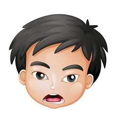 Face of a boy vector image