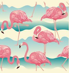 tropical bird flamingo vector image vector image