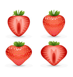 3d realistic fruit design strawberry vector image vector image