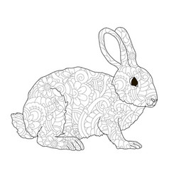 Adult antistress coloring rabbit hare animal vector