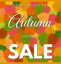 autumn leaves and an inscription autumn sale vector image