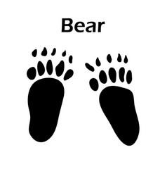 bear footprint vector image