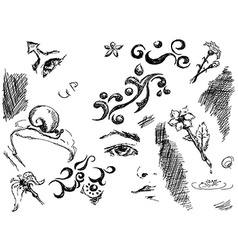 black ink doodles vector image