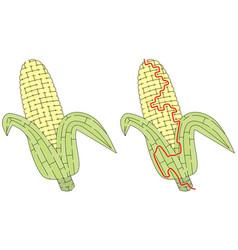 Corn maze vector