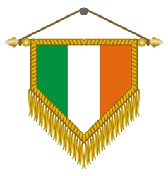 Pennant with the flag of ireland vector