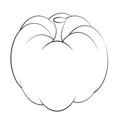 pumpkin symbol icon design beautiful isolated on vector image