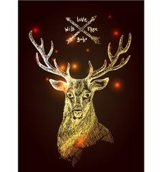 Sketch deer vector