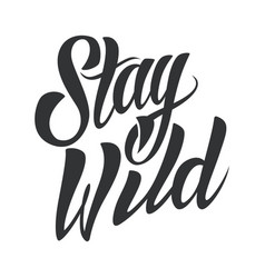 stay wild lettering vector image