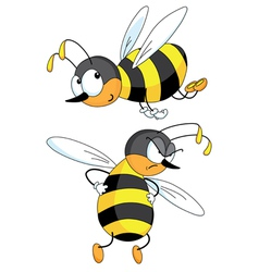 Two bees vector