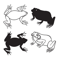 Two frog silhouettes vector image