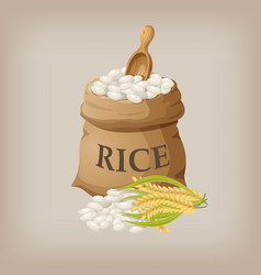 white rice in small burlap sack vector image