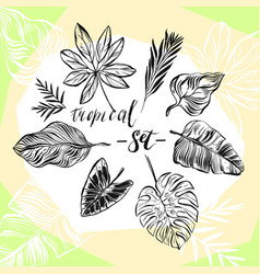 hand drawn abstract graphic summer vector image vector image