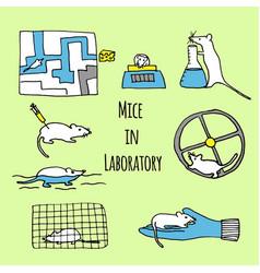 Mice in laboratory hand drawn vector