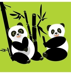 Two pandas sit in the woods and eat bamboo vector image vector image