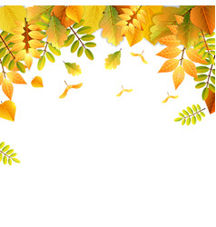 falling autumn leaves background in bright colors vector image