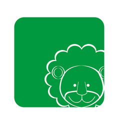 green square picture of lion animal vector image