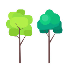 abstract tree in green colors on thin trunk vector image vector image