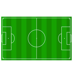 soccer field with real measures and texture grass vector image vector image