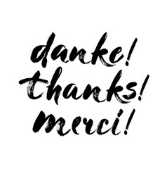 thank you lettering in english french german vector image